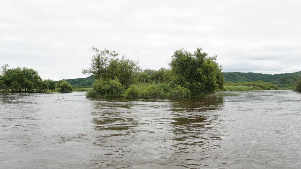 前日に台風が直撃していたため、かなり増水している釧路川。